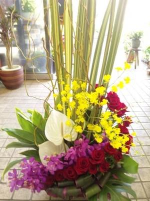 【生花フラワーアレンジメント】開店、開業、開院、周年祝い,御誕生日のお祝いに…