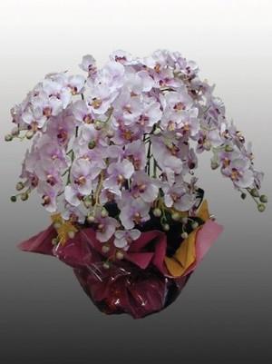 【胡蝶蘭12本立て(造花)ピンク】開店、開業、就任などの贈答品として…