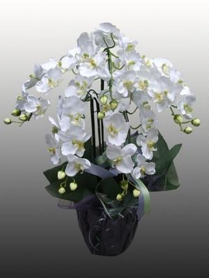 【胡蝶蘭(造花)5本立て(白)】開店、開業、就任やお供えものなどの贈答品として…