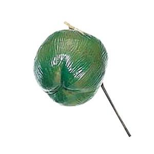 40cmココナッツフルーツ